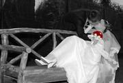 Видео и Фотоуслуги. Свадебная фотокнига в ПОДАРОК.  Киев,  Ирпень,  Буча