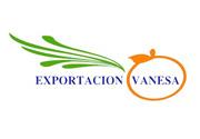 Продам овощи фрукты с Испании на Украину