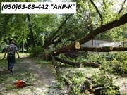 Аварийный спил деревьев 0506388442