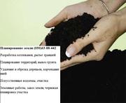 Удаление деревьев Киев,  0506388442 убрать участок,  выкорчевка пней