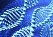 Квантовая диагностика организма на клеточном уровне
