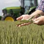 Сельскохозяйственная химия оптом и в розницу,  семена.