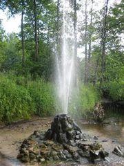Минеральная живая вода из источника.