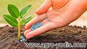 Средства защиты растений: гербициды,  фунгициды,  протравители
