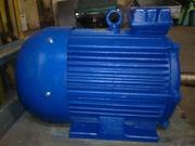 Электродвигатель 4АМ-200-М4.  37 кВт. 1500 об.м.