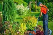 услуги  бригады садовников,  делаем любую работу в саду и огороде!!!