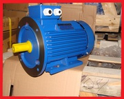 Электродвигатель електродвигун АИР 355 МLA6 250 кВт 1000 об/мин