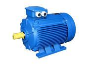 Электродвигатель електродвигун АИР 355 МLC84 315 кВт 700 об/мин