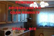 Сдам комнату в шикарном новом доме в Рожевке.