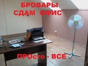 сдам офис в Броварах на Киевской.