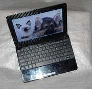 Нетбук Asus Eee PC 1001PQ