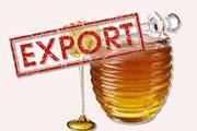 Продам мед на экспорт Европа ,  Америка,  Азия ( export of honey )