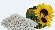 Удобрения и средства защиты,  производство Черкассы
