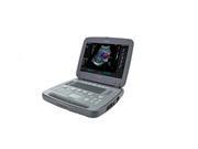 Сканер УЗИ  Siemens P500