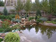 Гидросистемы, канализация,  водоотвод,  ландшафтные работы.