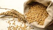 Куплю зерновые,  зерноотходы. Любые варианты