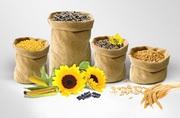 Куплю кукурудза,  соя,  пшениця,  соняшник